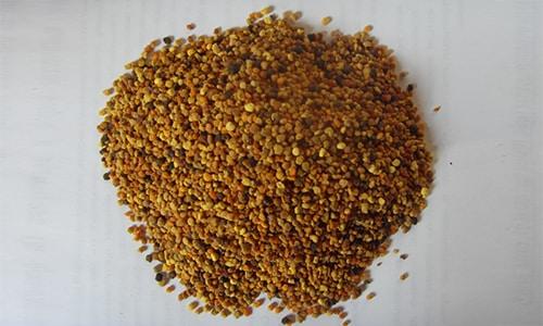 Перга, именуемая также пчелиным хлебом, помогает излечить различные мужские заболевания: импотенцию, воспаление предстательной железы, бесплодие, аденому простаты