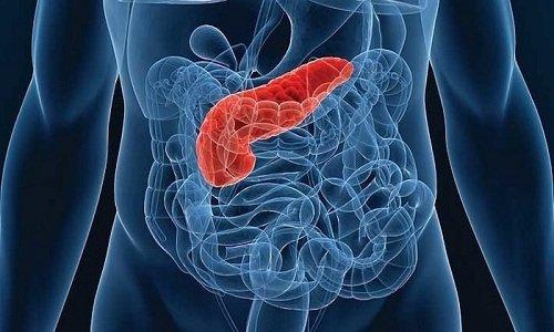 Фестал принимают при расстройстве внешнесекреторной функции поджелудочной железы