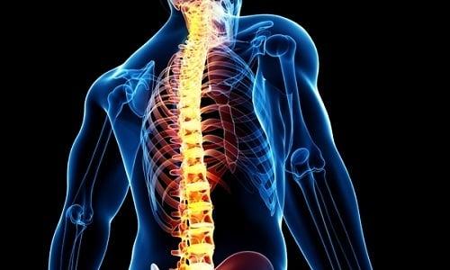 За работу предстательной железы отвечают точки, расположенные в зоне шейно-спинного отдела позвоночного столба