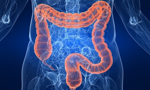 Некоторые специалисты применяли Регулакс пикосульфат для быстрой очистки толстого кишечника в связи с рентгенологическими исследованиями