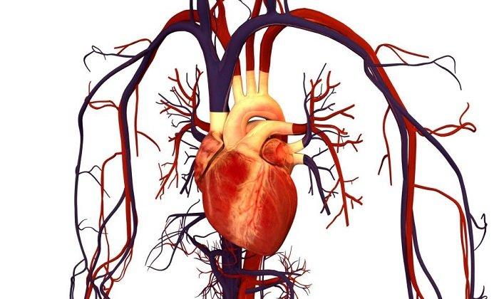 С осторожностью лекарство назначают пациентам с патологиями сердечно-сосудистой системы