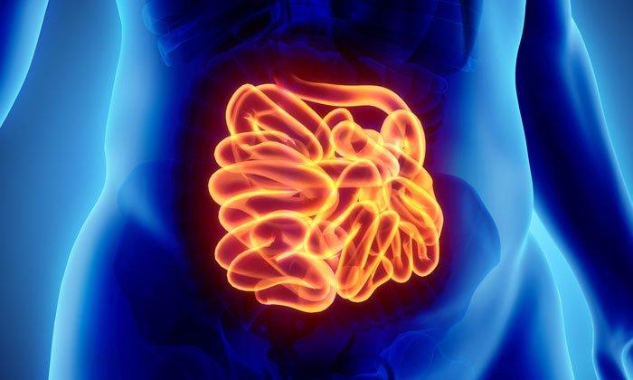 Неомицин противопоказан при кишечной непроходимости