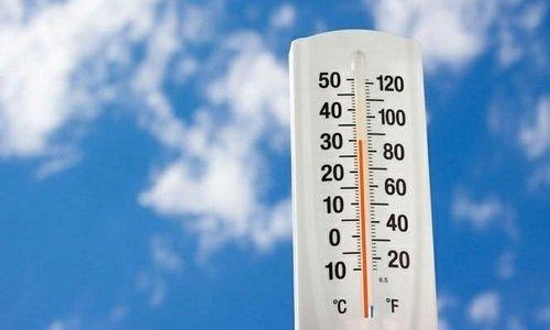 Таблетки на основе сухого порошка из крушины хранят при температуре не выше +25°С