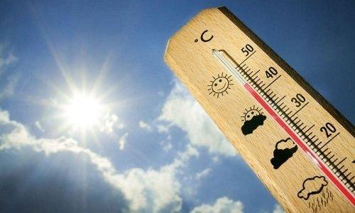 Хранить гель Тромблесс нужно при температуре +15°...+24°C