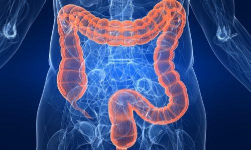 Нарушения работы кишечника - одно из показаний к применению Лактобактерина