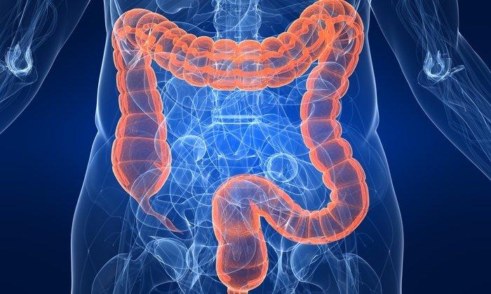 Лактулоза влияет на флору толстого кишечника, увеличивая содержание лактобацилл