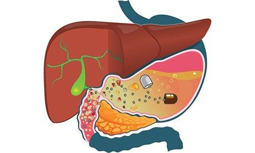После приема внутрь препарат Вазокет моментально всасывается в пищеварительном тракте