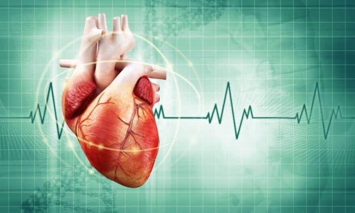 Папаверин вызывает нарушение ритма сердца