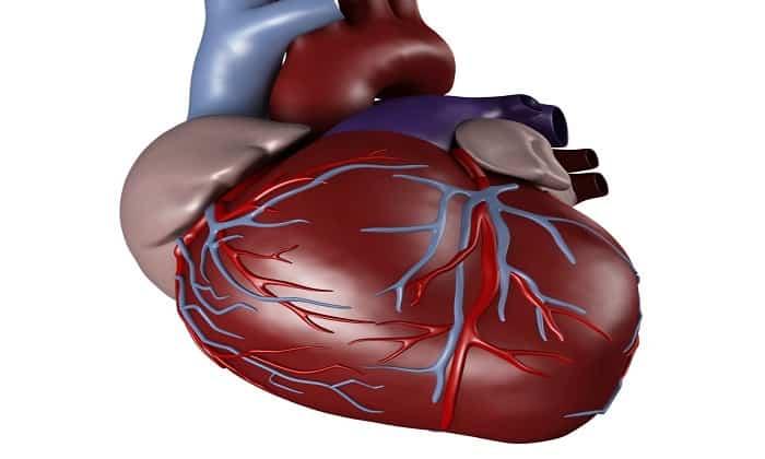 Препарат способствует нормализации работы сердечной мышцы