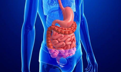 Основное вещество не всасывается пищеварительными стенками