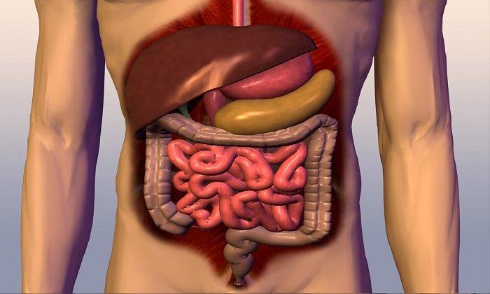 При острых воспалительных заболеваний в органах брюшной полости принимать Лаксигал-Тева запрещено