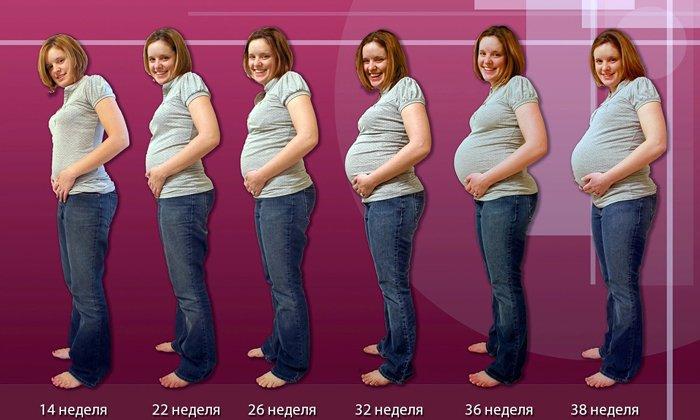 Противопоказано применение в первый триместр беременности