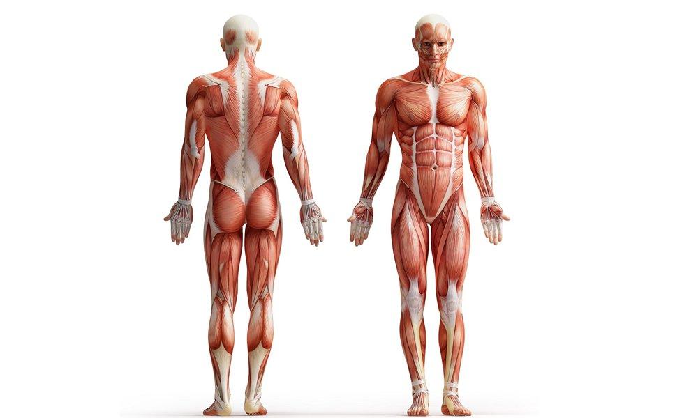 Повышенный тонус мышц может появиться во время лечения