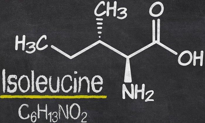 Продукт включает в себя множество аминокислот, например, изолейцин