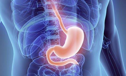 Cпазм сосудов желудка может привести к геморрою