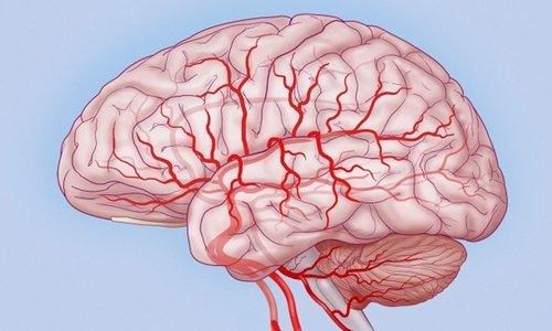 Оба препарата широко применяют для лечения дистрофических проявлений в отделах головного мозга