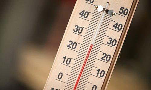 Хранят Салофальк при температуре не выше +25°C