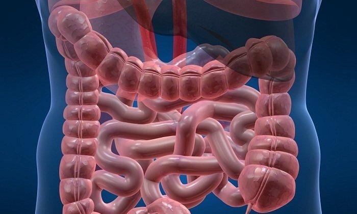 Непроходимость кишечника - одно из противопоказаний к применению средства
