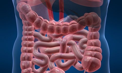 Кислота, входящая в состав препарата, стимулирует перистальтику кишечника и выработку желудочного сока