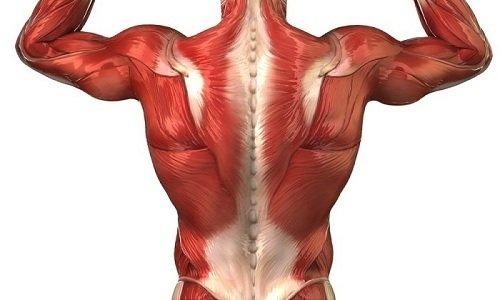При злоупотреблении слабительным наступает атония мышц