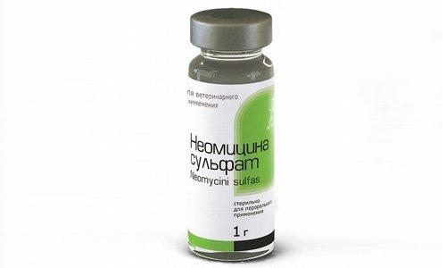 Для лечения ректальных свищей применяют препарат Неомицина сульфат