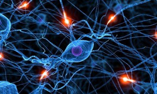 Действие Лидокаина направлено на обезболивание нервных сплетений
