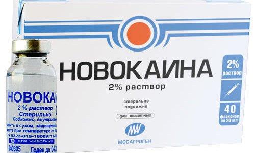 Приобрести Новокаин можно в упаковках, содержащих ампулы с раствором в объеме 2 мл