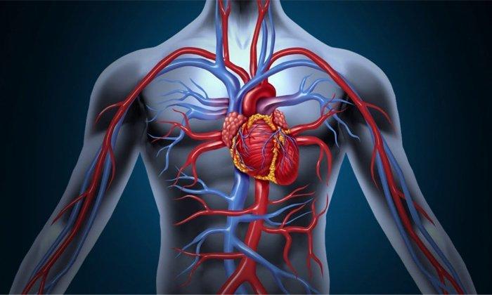 Заболевания сердечно-сосудистой системы являются относительным противопоказанием