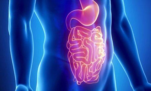 Оказываясь в ЖКТ, лекарство начинает действовать, связывая воду и повышая количество жидкости в химусе
