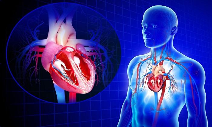 Папаверин вместе с Дибазолом используют при заболеваниях сердечно-сосудистой системы