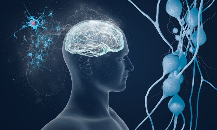 Преднизолон назначается при рассеянном склерозе