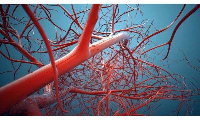 Рекомендуется принимать Флебодиа при ломкости и высокой проницаемости капилляров