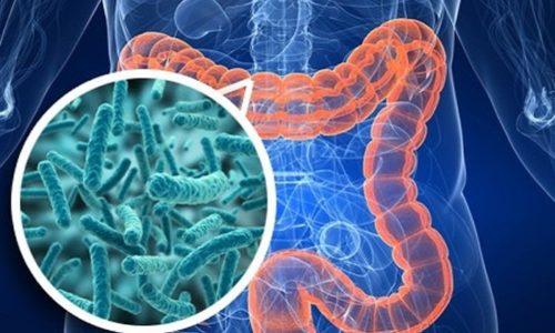 Основным показанием для применения Аципола является наличие нарушения микрофлоры кишечника