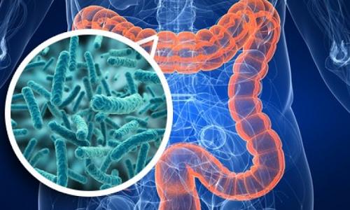 Основная задача препарата Хилак форте 1,1% - привести в норму кишечную микрофлору