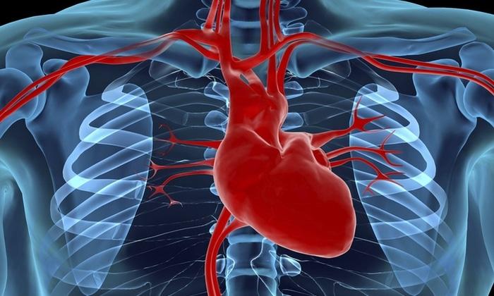 Новокаиновые растворы противопоказаны при тяжелых сердечно-сосудистых болезнях