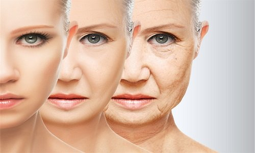 Ретинол способствует задержке процессов старения