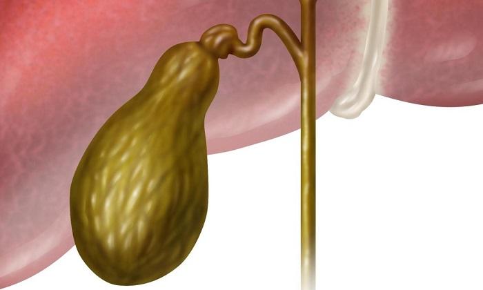 Дисфункции желчного пузыря - показание к применению Дюспаталина