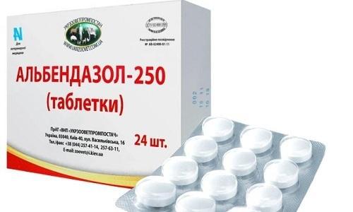 Альбендазол обладает широким спектром действия, влияя на аскариды, острицы, цестоды, нематоды и даже лямблии