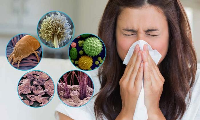 Деринат снижает риск развития аллергической реакции