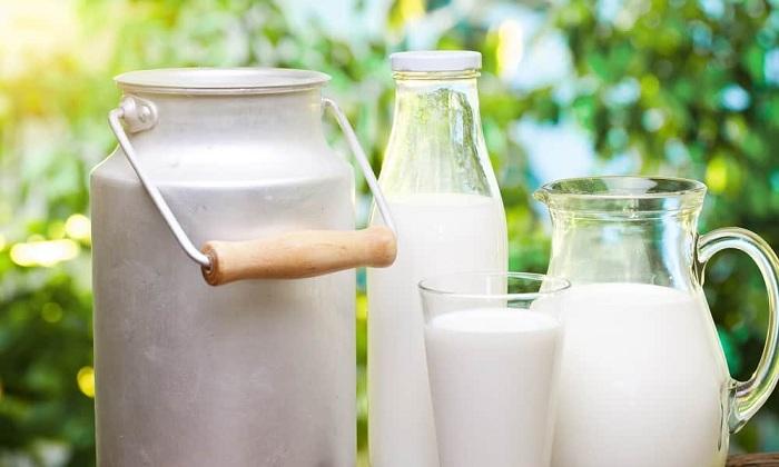 Следует исключить из рациона молоко